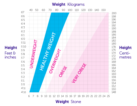 Guide to your Body Mass Index (BMI) picture