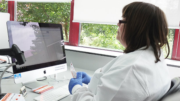 Labartory staff analysing bowel screening test results