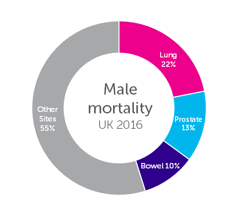 The Three Most Common Causes of Cancer Death in Males Pie Chart Percentages of All Cancer Deaths (C00-C97), UK, 2016