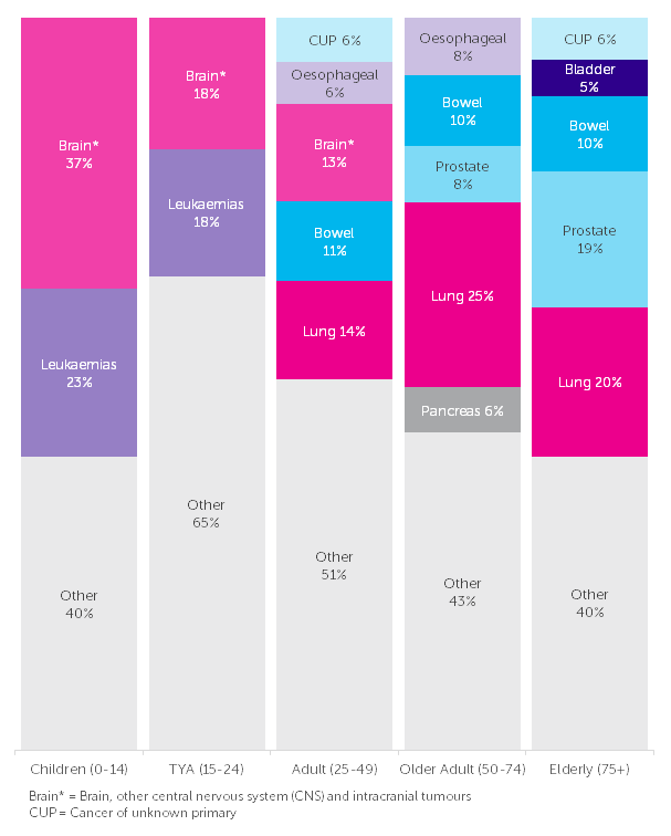 The Five Most Common Causes of Cancer Death in Males, Number of Deaths, by Age, UK, 2014-2016