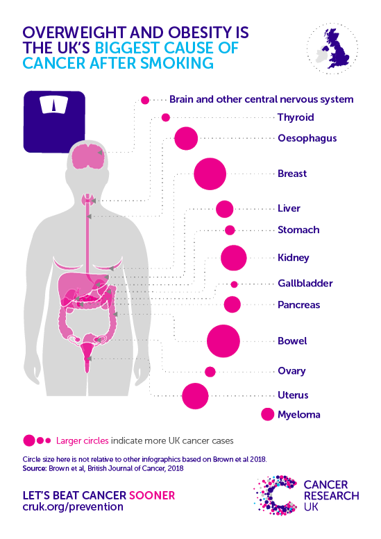 Image showing the types of cancers caused by obesity