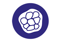 [Cell culture icon]