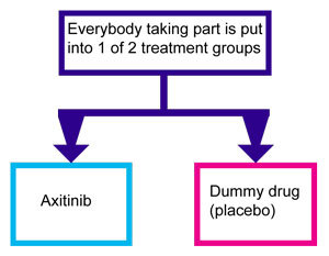 Axmus C trial diagram