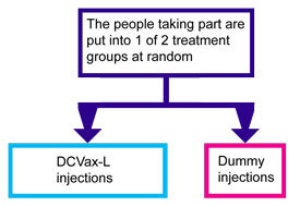 A trial of a vaccine called DCVax-L for glioblastoma multiforme