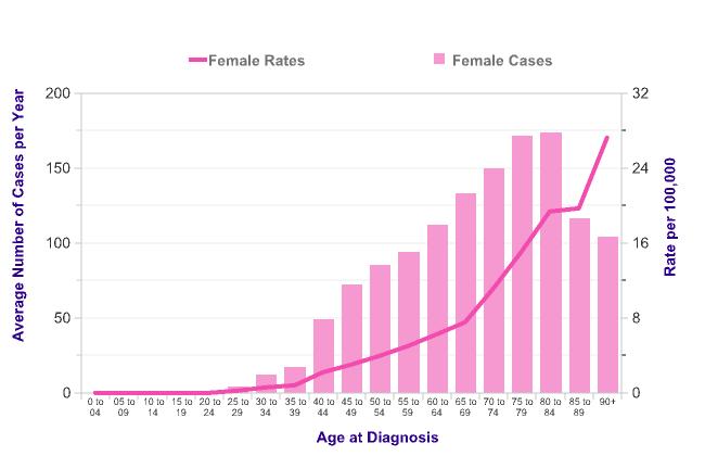 Research statistics on vulva size