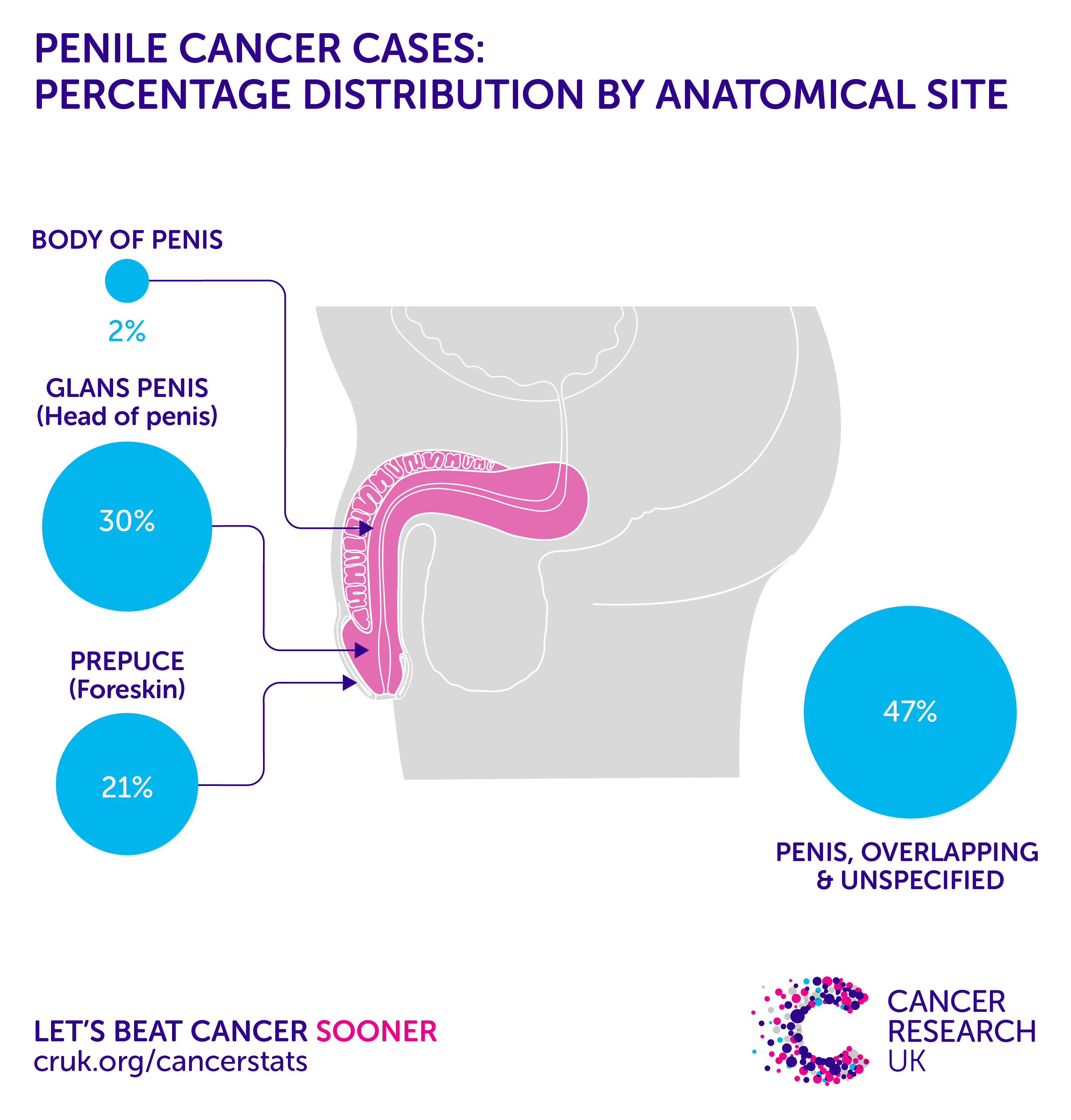 Penile Cancer Incidence Statistics Cancer Research Uk