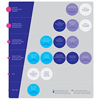 Fellowships and careers pathway