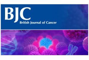 British Journal of Cancer