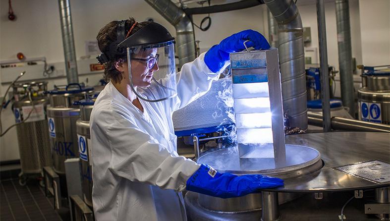 Technician removing samples from liquid nitrogen