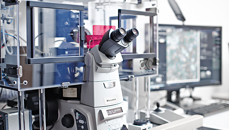 Microscope showing results on a screen
