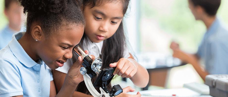 Primary school girls doing science activities together