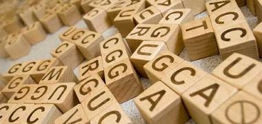 Wooden letters of the DNA code