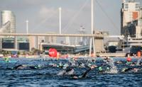 Swimmers in the Docklands