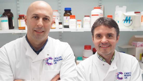 Professors Mark Cragg and Stephen Beers