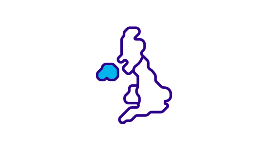 Icon of northern ireland cancer services