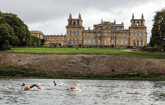 blenheim palace swimmers