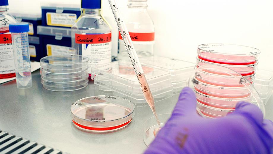 Photo: lab experiments