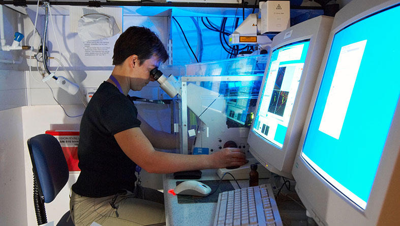 Researcher using a microscope that projects the image on a screen.
