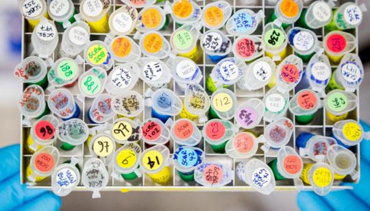 Testube samples