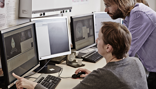 Researchers analyse results on a computer