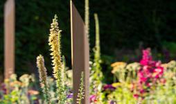 CRUK 'Pledge Pathway to Progress' 2019 Garden pledge stakes