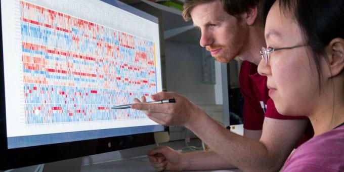 Scientists analysing computer data