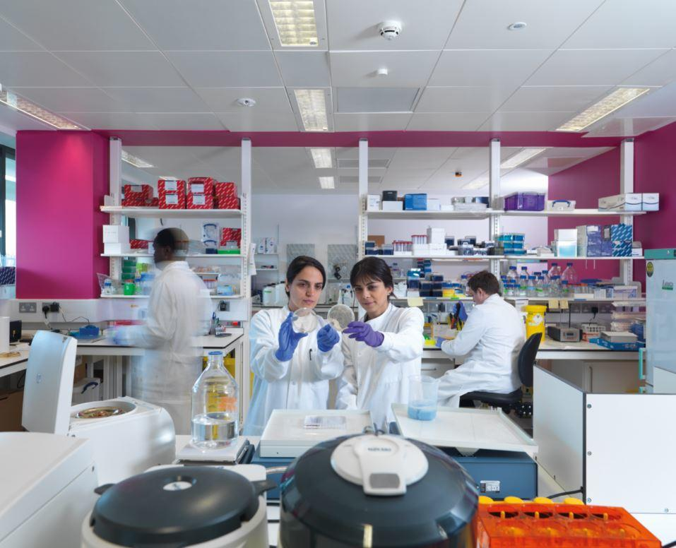 Women scientists in a lab looking at a Petri dish