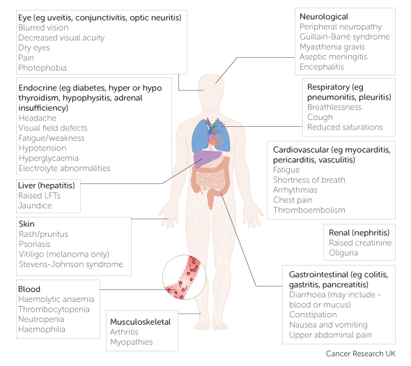 examples-of-immune-related-adverse-events-and-some-possible-symptoms.png