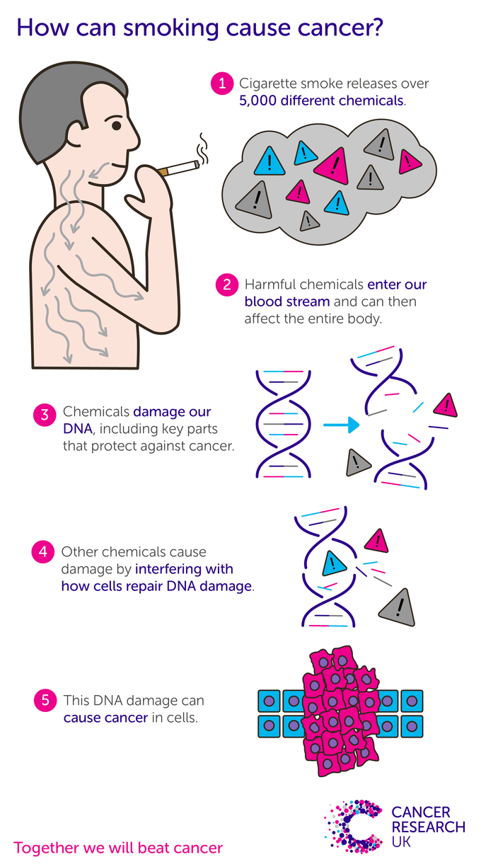 Harmful chemicals in cigarette smoke can damage DNA in cells and cause cancer