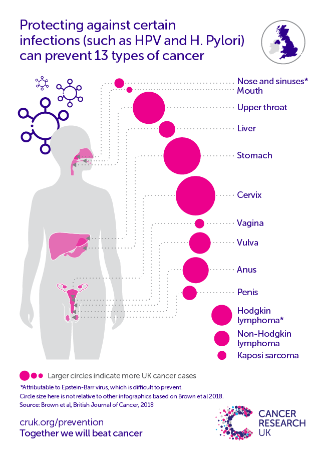 Infographic showing the cancer types caused by infections.