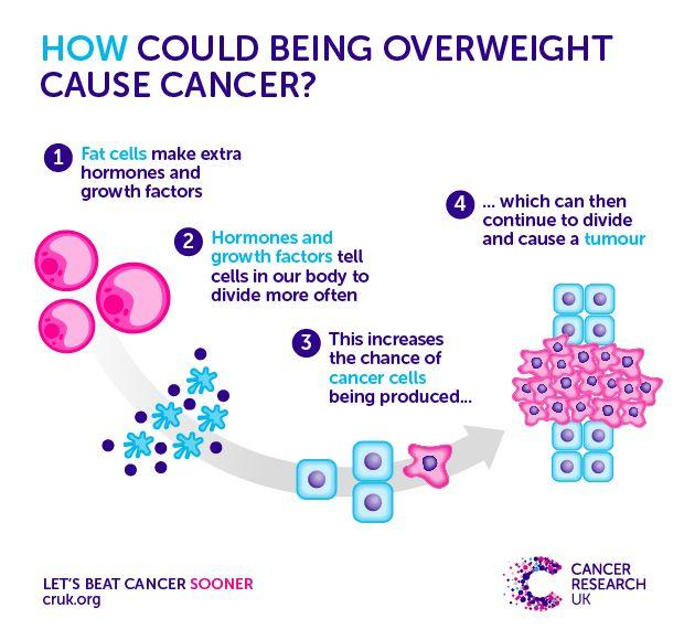 Image result for cancer obesity