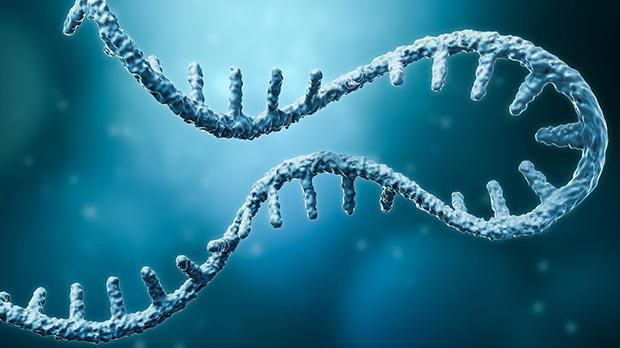 Illustration of messenger RNA (mRNA)