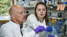 Babraham Institute group leader Dr Simon Cook and PhD student Emma Minihane discuss research results in the lab as part of the continuation of this research in the Cook lab. Image credit: the Babraham Institute.