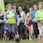 Dog Jog Coventry
