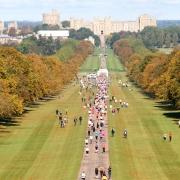 The Long Walk - Windsor